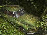 长期闲置的汽车有什么危害?又该如何保养?